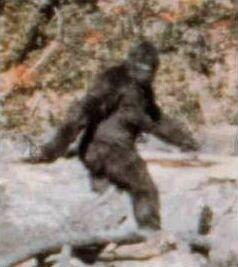 O ceată de Bigfoot s-a arătat în Atoka