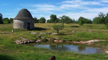 Fiara din Hunt – Quercy